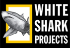 60-White-Shark-Projects